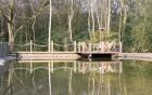 Lake & Pier
