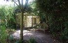 woodland walk within hospital